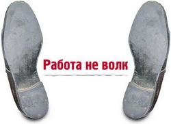 http://noginsk.ucoz.com/