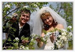 Ногинск Свадьба